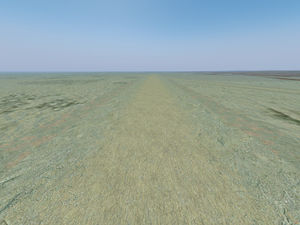 Dirt runway example 1